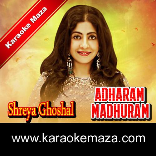 Adharam Madhuram Vadanam Karaoke (English Lyrics) - Video 3